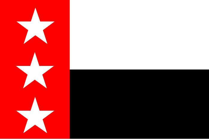 Flag of the Republic of the Rio Grande (1840)